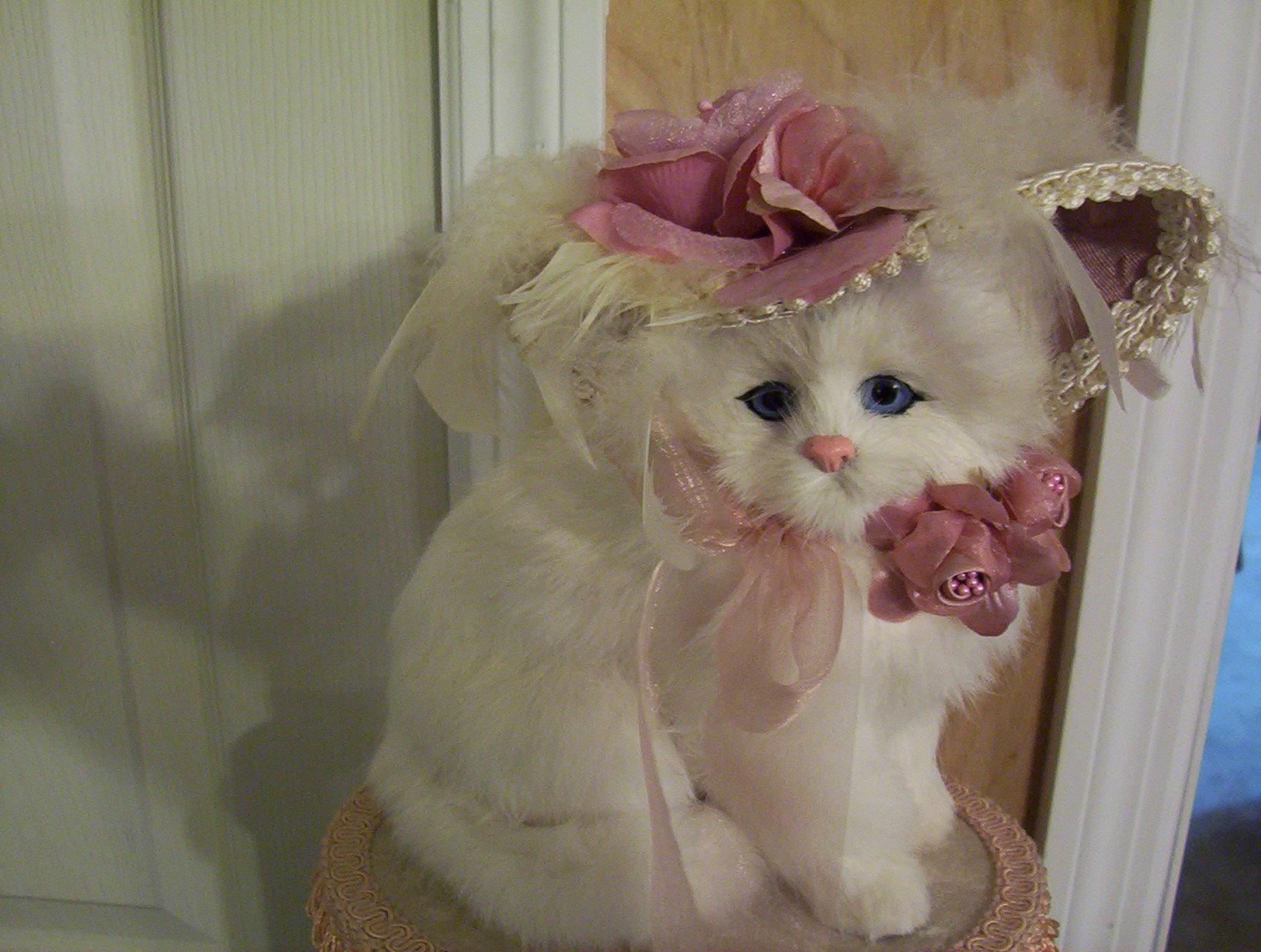 Victorian Fur Baby Cat